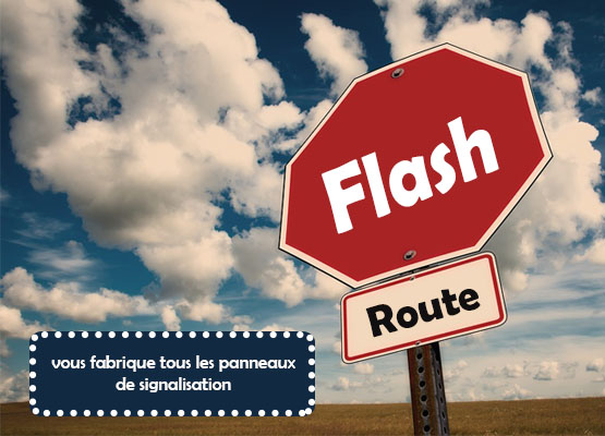 flash route1